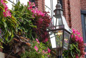 Shop for gas lanterns